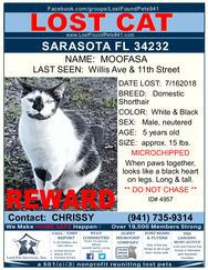Have you seen Moofasa?