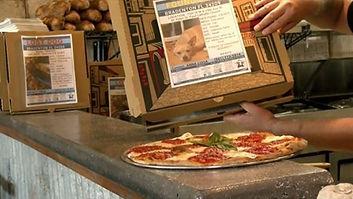 pizza box lost pet services.JPG