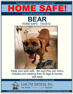 4835 BEAR FOUND DOG.jpg