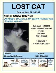 Have you seen Snow Bruner?