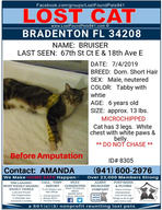 Have you seen Bruiser?