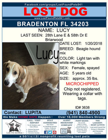Have you seen Lucy?