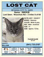 Have you seen Smokie?