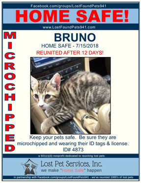 BRUNO HOME SAFE