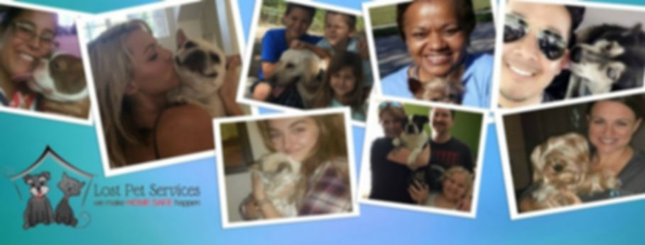lost pets, missing pets,happy tails, home safe