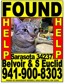 flyer for found pets website.jpg