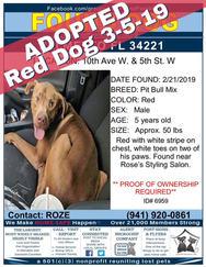 6959 red dog.jpg