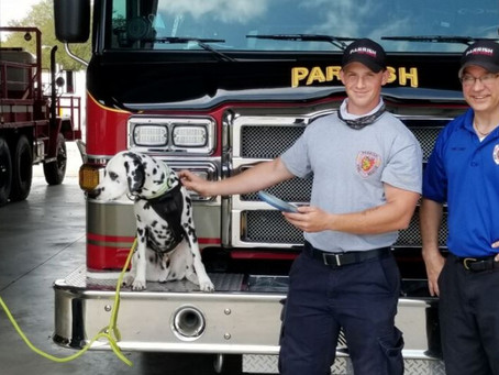 Local Fire Station Chips in to Help Lost Pets