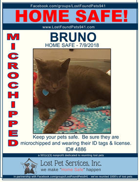 4886 BRUNO HOME SAFE.jpg