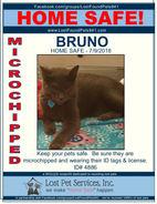 4886 BRUNO HOME SAFE.jpg