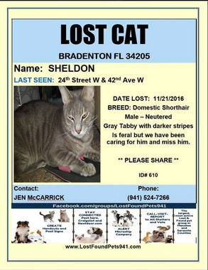 Have you seen Sheldon?