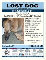 Have you seen Koda?
