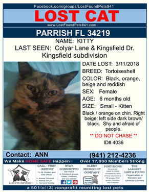 Have you seen Kitty?