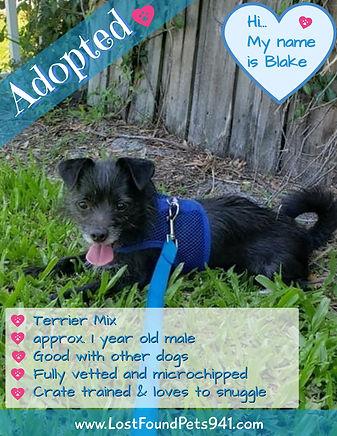 Blake adopted.jpg