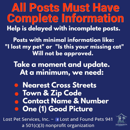 What To Do When You Have Lost A Pet