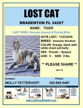 Have you seen Tiger?