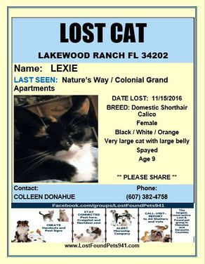 Have you seen Lexi?