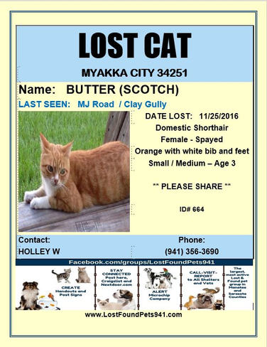 Have you seen Butterscotch?