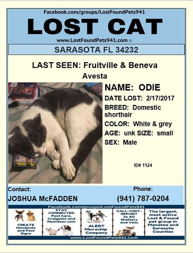 Have you seen Odie?