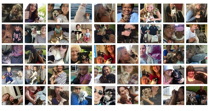 reunited collage lost pet serviceds.jpg