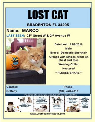 Have you seen Marco?