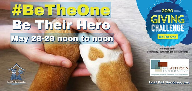 #BeTheOne flyer banner lost pet services