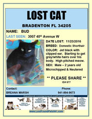 Have you seen Bud?
