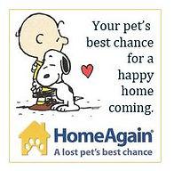 Home Again logo.JPG