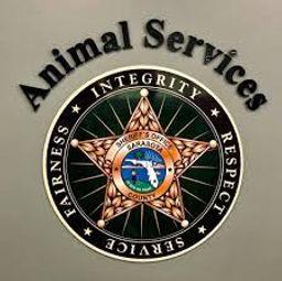 Sarasota County Sheriffs Department logo