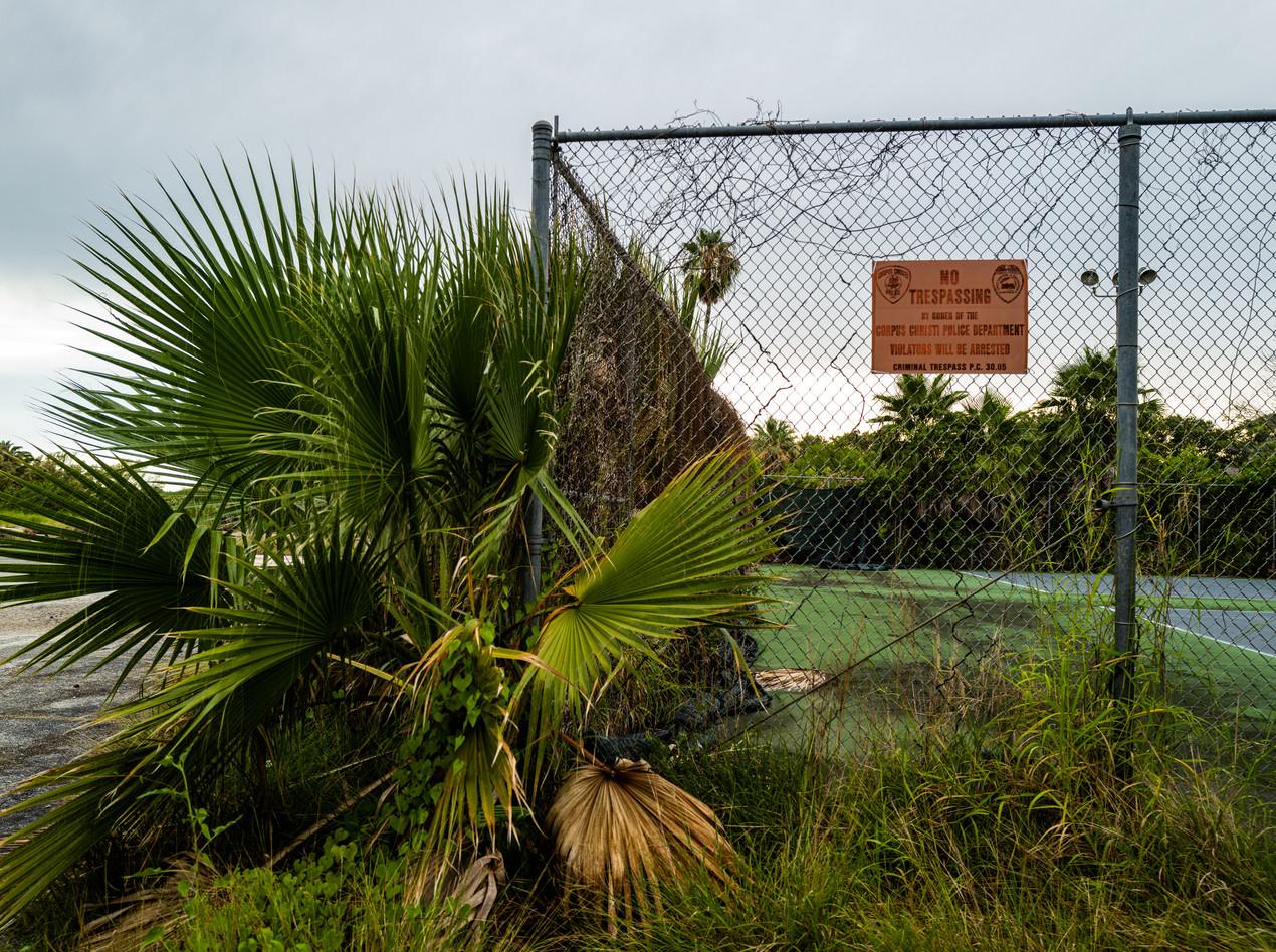 Barisi Tennis Court Overgrowth