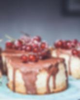 Craneberries Gâteaux Au Chocolat