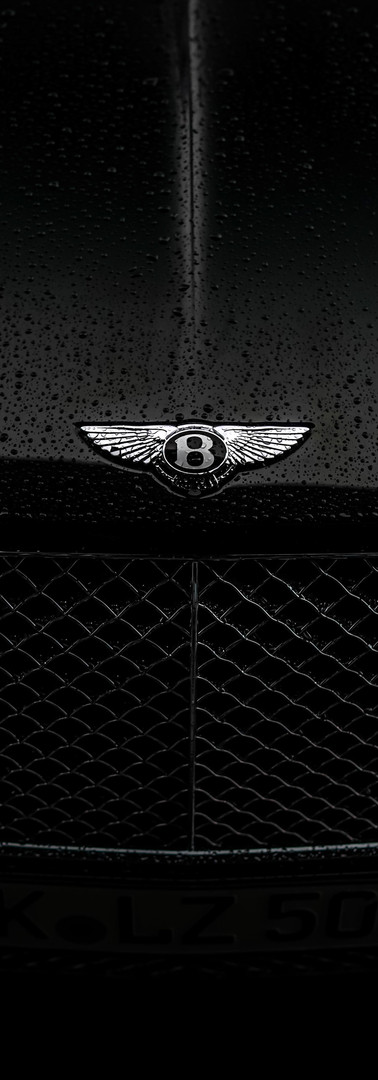Bentley Continental Grill
