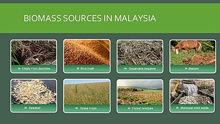 biomass-energy-12-638.jpg