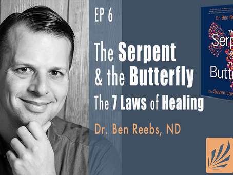Ep 6 | the Serpent & the Butterfly: the 7 Laws of Healing by Dr. Ben Reebs