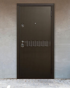 Дверь металл металл.jpg