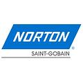 Logo NORTON.png