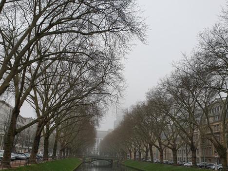 Que hacer en Düsseldorf