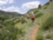 8 august upper gulch trail.jpg