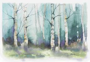 6 aspen blue - spring - summer.jpg