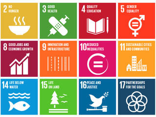 Will the UN save us or does business need its own plan?