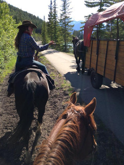 Trail riding in the Rocky Mountains