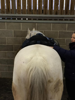 Assessing the saddle