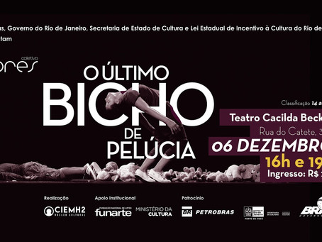 COLETIVO FLORES NO RIO DE JANEIRO