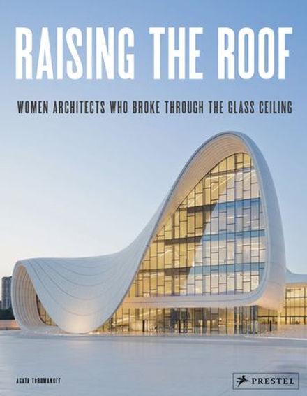 raising the roof.jpg