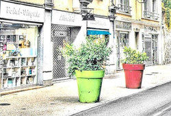 Librairie généraliste POINT VIRGULE - AURILLAC