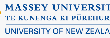 Workshop at Massey University Business School, New Zealand, 6th Sept 2017