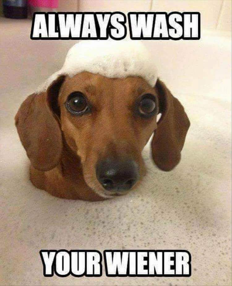 always wash your wiener