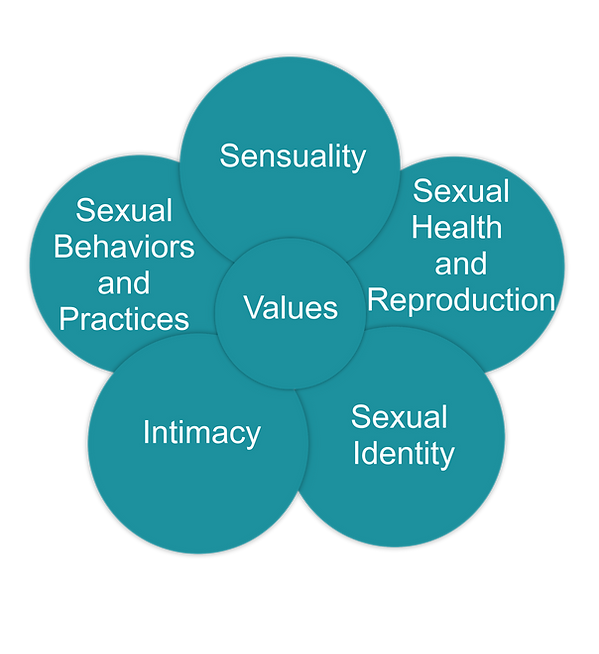 Circles of Sexuality.png