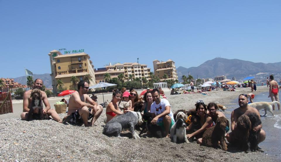 Quedada Pdae Playa Málaga