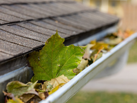 All About Our Gutter Cleaning Service